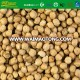 Dried Products Kabuli Chickpeas