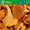 Good Grade Frozen IQF Chanterelle